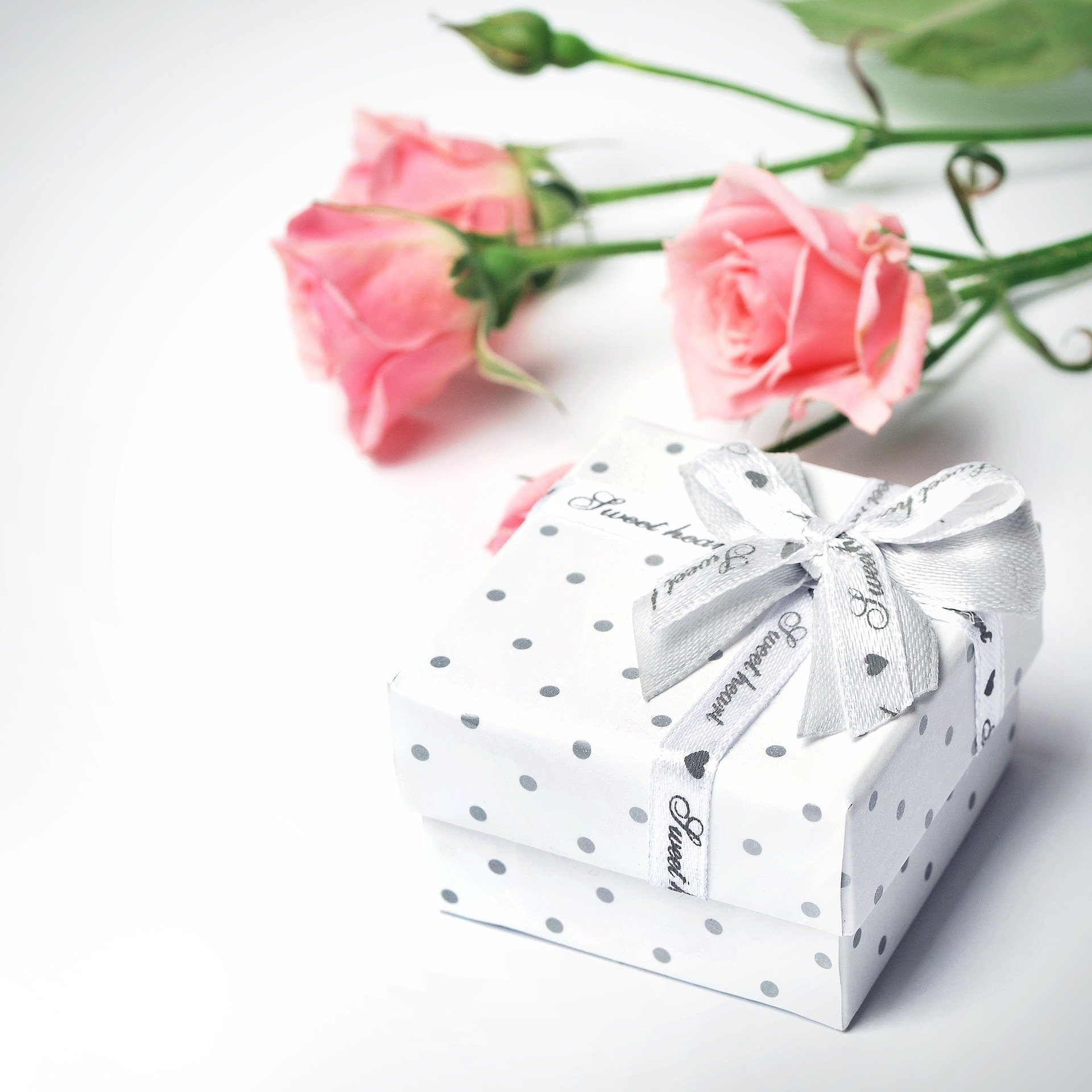 会社設立のお祝いはどうする?知っておくべき相場や贈り物について解説